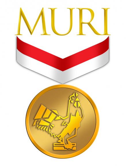 Logo MURI